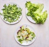 Olika typer av grönsallat, fördelade ut på vita plattor, maten för vegetarisk kokkonst för begreppet den sunda Arkivbilder