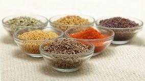 Olika typer av indiska kryddor i glass bunkar Arkivfoto