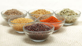 Olika typer av indiska kryddor i glass bunkar Royaltyfria Foton