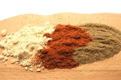 Olika typer av kryddan Royaltyfri Bild