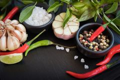 Olika typer av kryddor och ?rter f?r att laga mat p? svart kritiserar b arkivbild