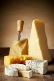 Olika typer av ost Royaltyfria Bilder