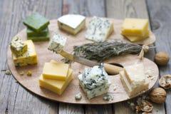 Olika typer av ost på abstrakt tappning målar paletten Fotografering för Bildbyråer