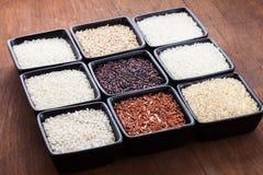 Olika typer av ris Arkivfoton