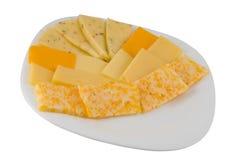 olika typer för ost Royaltyfri Foto