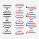 Olika uppsättningar för DNA av spiral på genomskinlig bakgrund det mitt designelementgallerit ser var god liknande till den din v vektor illustrationer