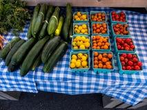Olika variationer av tomater och gurkor Arkivfoto