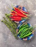 Olika variationer av varm peppar på en grå texturerad bakgrund Östligt asiatiskt matbegrepp Plan orientering royaltyfri foto