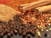 olika varma kryddor Royaltyfria Bilder
