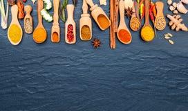 Olikt av indiska kryddor och örter i träskedar Lägenhet som är lekmanna- av Arkivfoto