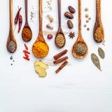 Olikt av indiska kryddor och örter i träskedar Lägenhet som är lekmanna- av Fotografering för Bildbyråer