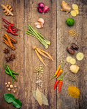 Olikt av indiska kryddor och örter Matlagningingredienser och rött Fotografering för Bildbyråer