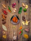 Olikt av indiska kryddor och örter Matlagningingredienser och rött Arkivbilder