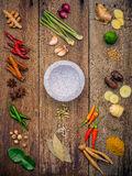 Olikt av indiska kryddor och örter Matlagningingredienser och rött Royaltyfria Foton