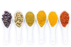 Olikt av kryddor i en sked som isoleras på vit bakgrund Royaltyfri Foto