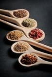 Olikt av kryddor i träskedar royaltyfria foton