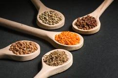 Olikt av kryddor i träskedar arkivbild