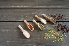 Olikt av kryddor och i träskedar Lägenheten som är lekmanna- av kryddaingredienschili, salt som är himalayan saltar, kyndeln och  royaltyfri fotografi
