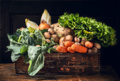 Olikt av nya grönsaker i gammal ask över mörkt trä Royaltyfri Foto