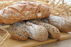olikt bröd Arkivfoton