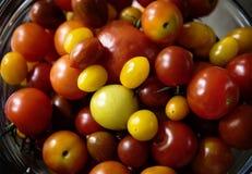 Olikt format av tomater i en bunke Arkivfoton