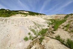 olikt vulkandjurliv Fotografering för Bildbyråer