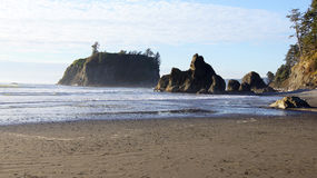 OLIMPIJSKI park narodowy, usa, 03th Seattle, Waszyngton PAŹDZIERNIK 2014 - rubinu plaża blisko - Obrazy Stock