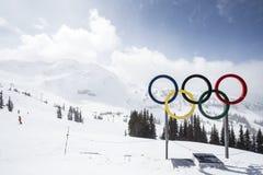 Olimpijskie pętle od wierzchołka Blackcomb góra Zdjęcia Royalty Free