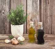 Olio d'oliva ed aceto in bottiglie con aglio e rosmarini modificato Fotografie Stock Libere da Diritti