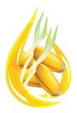 Olio del germe di frumento. Goccia stilizzata. Fotografia Stock