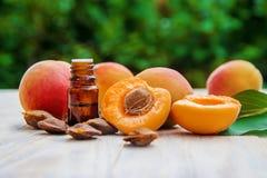 Olio dell'albicocca in un piccolo barattolo Fuoco selettivo immagine stock
