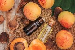 Olio dell'albicocca in un piccolo barattolo Fuoco selettivo fotografia stock libera da diritti