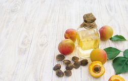 Olio dell'albicocca in un piccolo barattolo Fuoco selettivo immagini stock libere da diritti