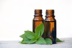 Olio dell'aroma in bottiglie con la menta Fotografie Stock