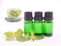 Olio dell'aroma della menta piperita Fotografie Stock Libere da Diritti