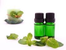 Olio dell'aroma della menta piperita su fondo bianco Fotografie Stock