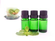 Olio dell'aroma della menta piperita su fondo bianco Immagini Stock