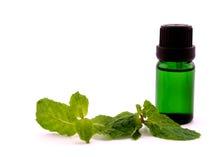 Olio dell'aroma della menta piperita su fondo bianco Fotografia Stock Libera da Diritti