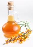 Olio dell'olivello spinoso Immagini Stock