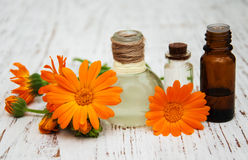 Olio della calendula in bottiglie di vetro Fotografie Stock Libere da Diritti