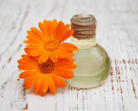 Olio della calendula in una bottiglia di vetro Fotografia Stock Libera da Diritti