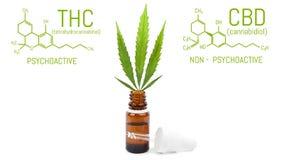 Olio della cannabis di CBD con il contagoccia, foglia verde della canapa in bottiglia I prodotti della marijuana hanno isolato il fotografie stock libere da diritti