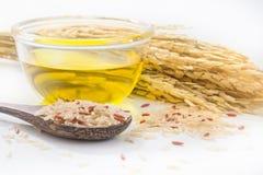 Olio della crusca di riso immagine stock