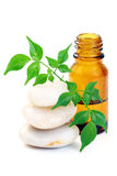 Olio di Aromatherapy Fotografia Stock