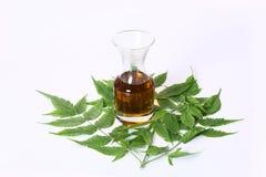 Olio di Ayurvedic Neem dell'indiano, indiano Ayurvedic immagine stock