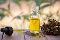 Olio di canapa, bottiglia dell'olio della marijuana, estratti dell'olio della cannabis in barattoli, marijuana medica, pipetta de fotografia stock libera da diritti