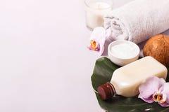 Olio di cocco e foglie tropicali Concetto della stazione termale di cura di capelli Fotografia Stock