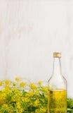 Olio di colza in bottiglia di vetro su fondo di legno bianco Immagine Stock