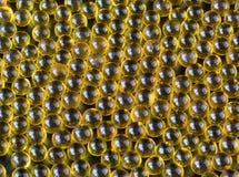 Olio di fegato di merluzzo Fine sull'olio di pesce su fondo nero fotografia stock libera da diritti