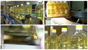 Olio di girasole sulla linea di produzione multi schermo archivi video